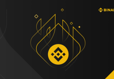 BNB-Burn-Binance-Coin-Burn